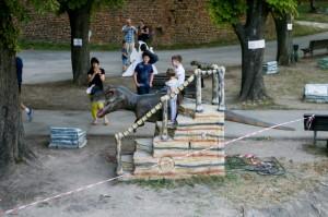 Belgrade Fortress (15)