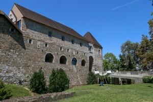 Ljubljana Castle (12)
