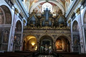 Ljubljana Cathedral (31)