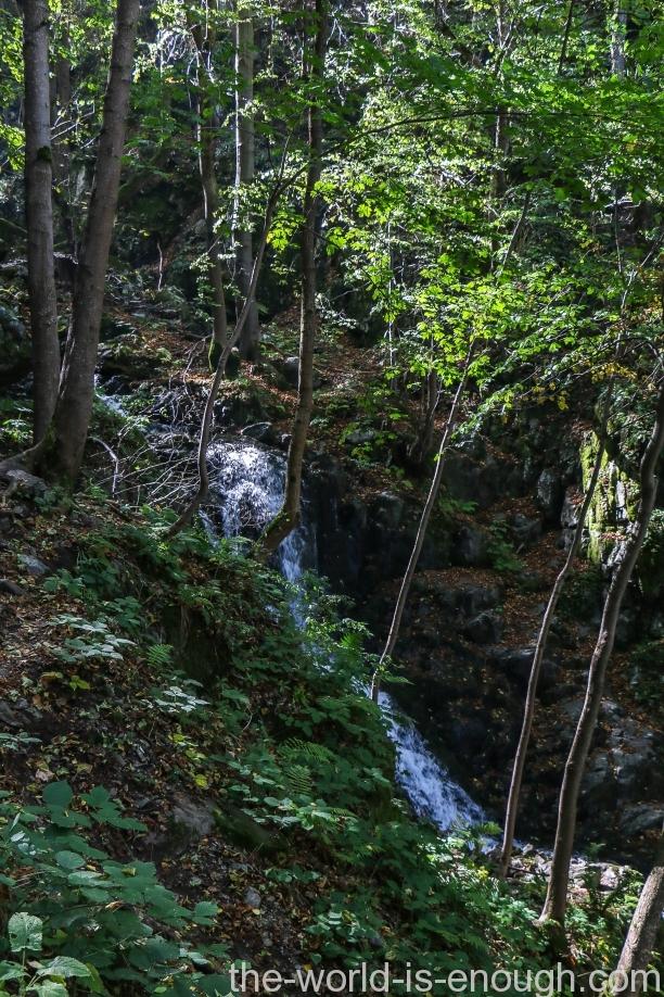 Река Боянска, Витоша