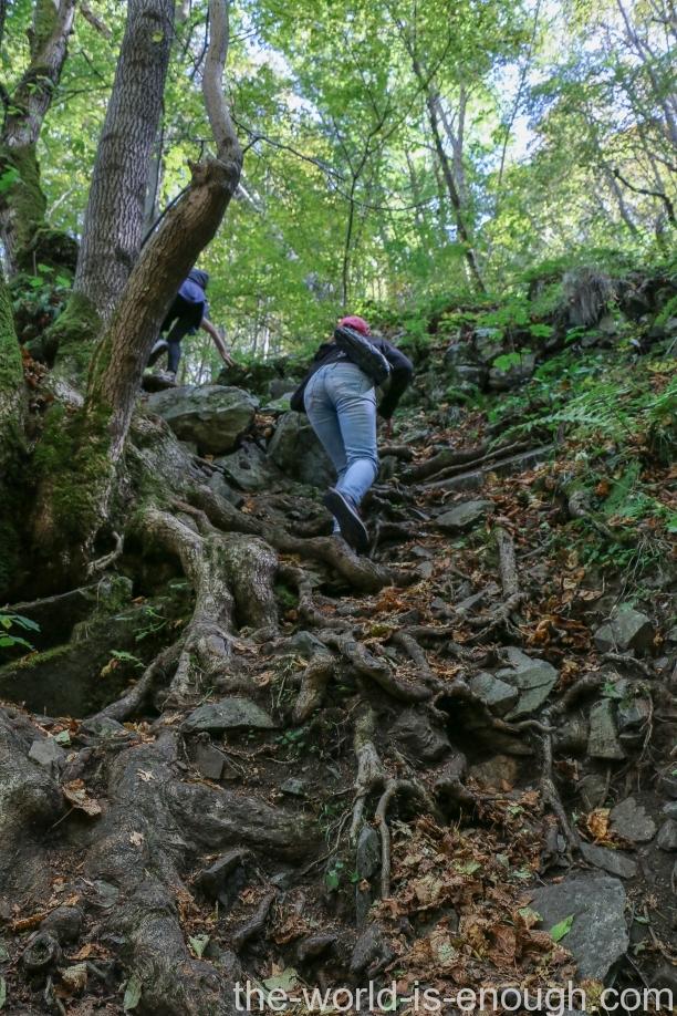 Витоша. Маршрут к Боянскому водопаду