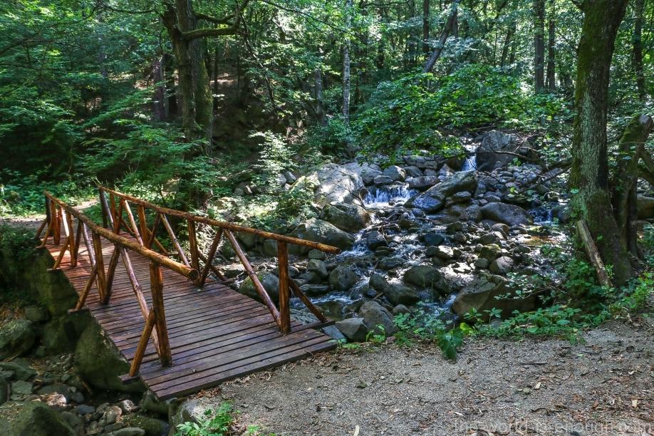 Витоша, мост через ручей