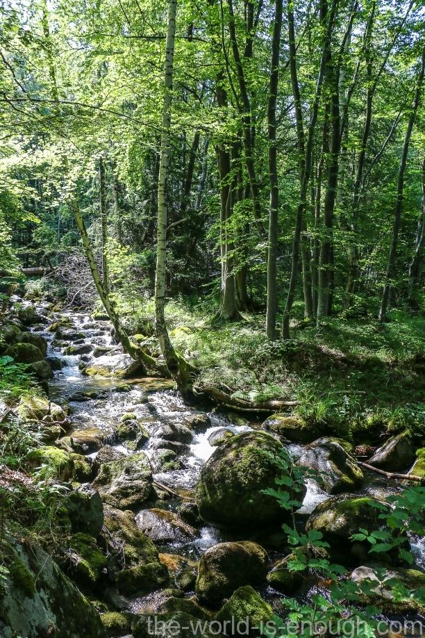 Витоша, Болгария
